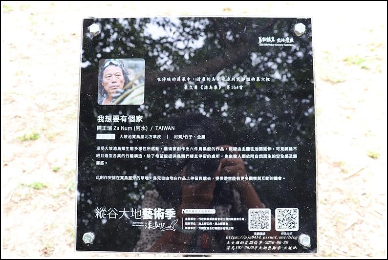 漂鳥197-2020年大地藝術季(大坡池)-2020-06-19.jpg