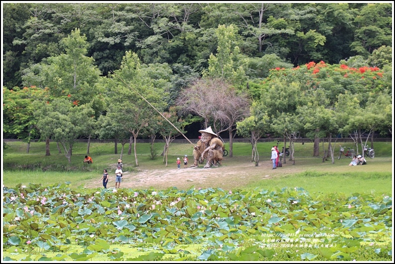 漂鳥197-2020年大地藝術季(大坡池)-2020-06-36.jpg