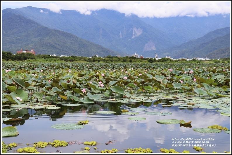 漂鳥197-2020年大地藝術季(大坡池)-2020-06-41.jpg