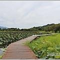 漂鳥197-2020年大地藝術季(大坡池)-2020-06-64.jpg