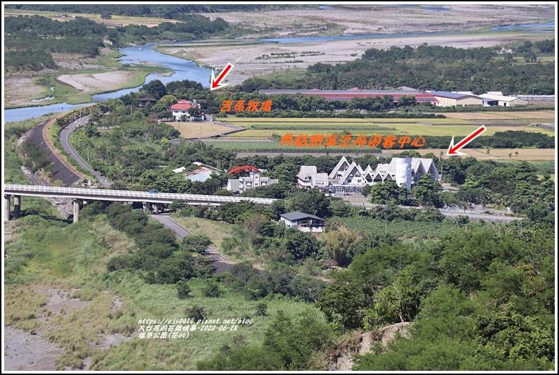 瑞港公路(花64)-2020-06-07.jpg