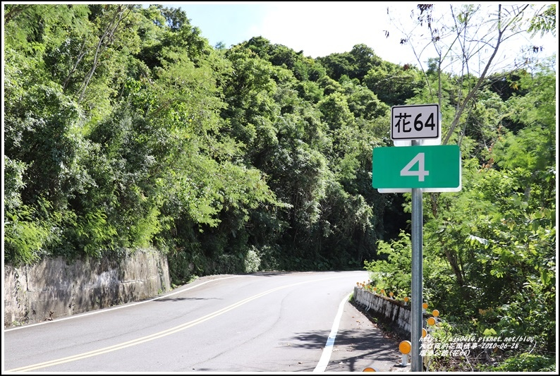 瑞港公路(花64)-2020-06-08.jpg