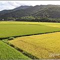 長富大橋-2020-06-04.jpg