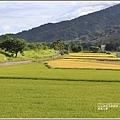 長富大橋-2020-06-03.jpg
