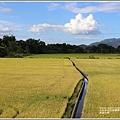 長富大橋-2020-06-01.jpg