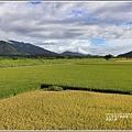 長富大橋-2020-06-07.jpg