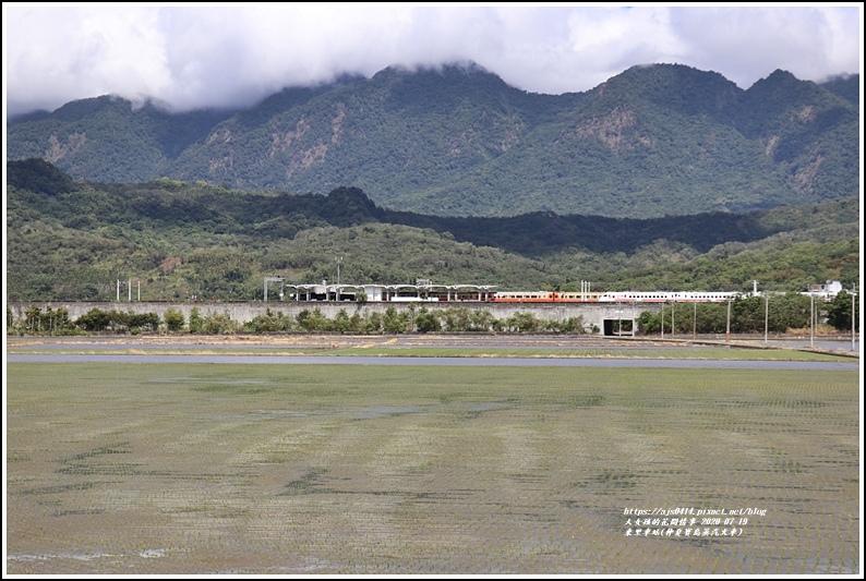 東里車站(仲夏寶島蒸汽火車)-2020-07-18.jpg
