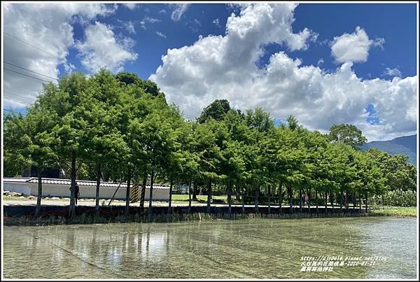鳳林林田神社-2020-07-31.jpg