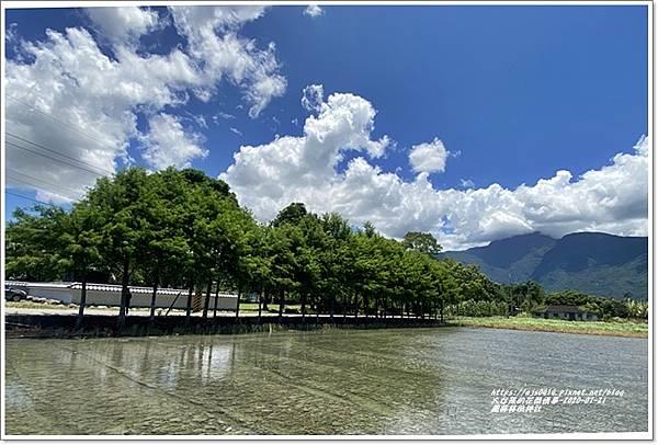 鳳林林田神社-2020-07-32.jpg