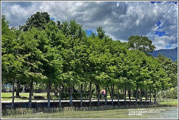 鳳林林田神社-2020-07-34.jpg
