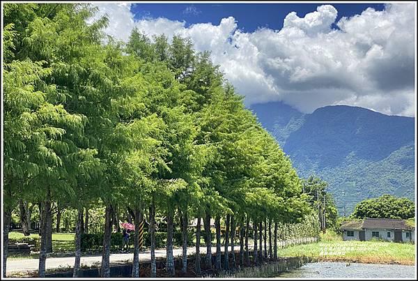 鳳林林田神社-2020-07-35.jpg