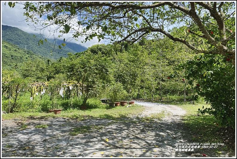 青陽蝴蝶農園-2020-07-07.jpg