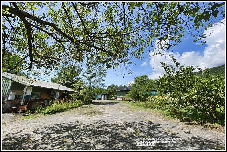 青陽蝴蝶農園-2020-07-06.jpg