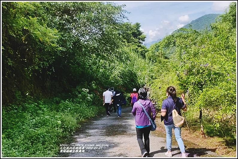 青陽蝴蝶農園-2020-07-44.jpg