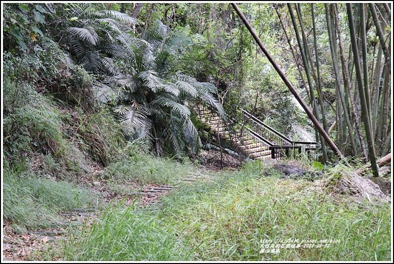 羅山瀑布-2020-08-40.jpg