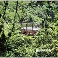 羅山瀑布-2020-08-47.jpg