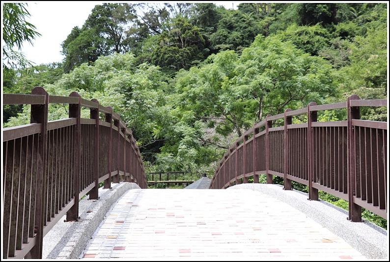 羅山瀑布-2020-08-76.jpg