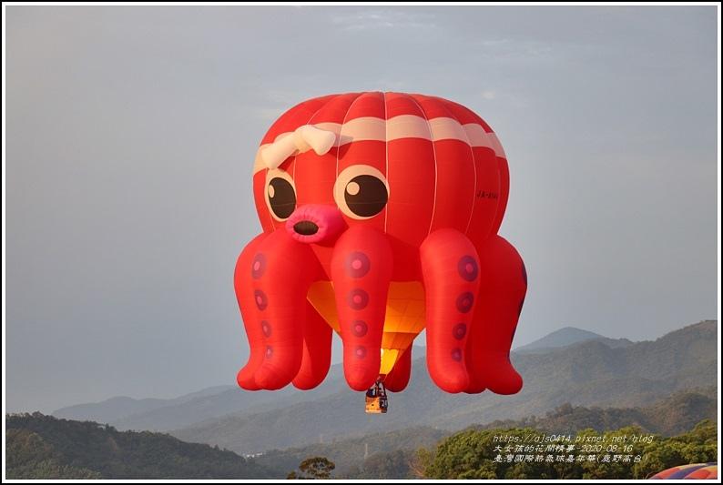 臺灣國際熱氣球嘉年華(鹿野高台)-2020-08-16.jpg