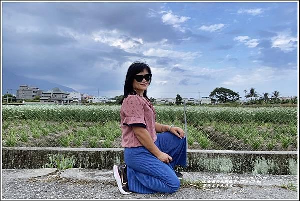 吉安九月雪(韭菜花田)-2020-09-11.jpg