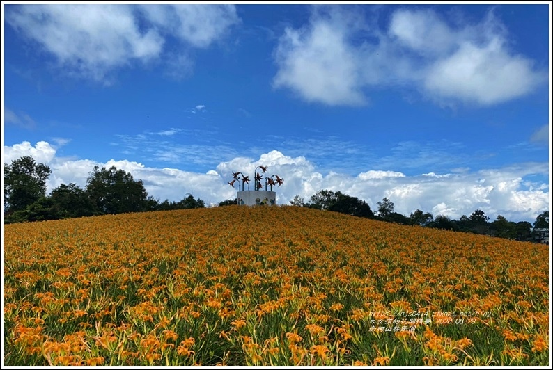 赤柯山林家園-2020-08-09.jpg