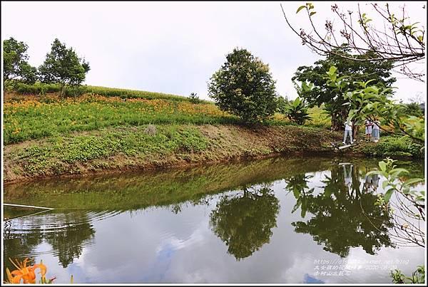 赤柯山金針花海(三巨石)-2020-08-10.jpg