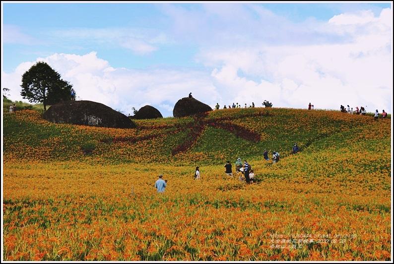 赤柯山金針花海(三巨石)-2020-08-01.jpg