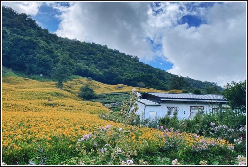 赤柯山黎園農園-2020-08-01.jpg