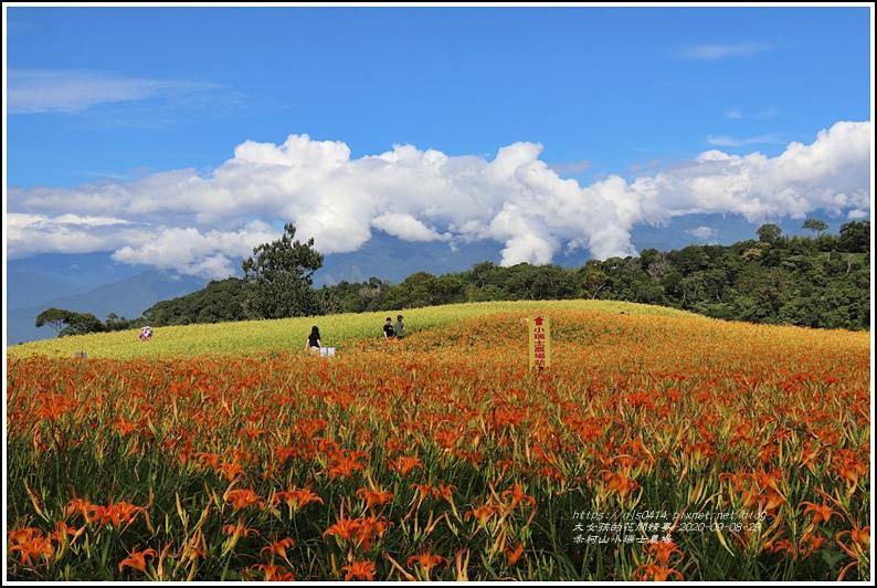 赤柯山小瑞士農場-2020-08-03.jpg