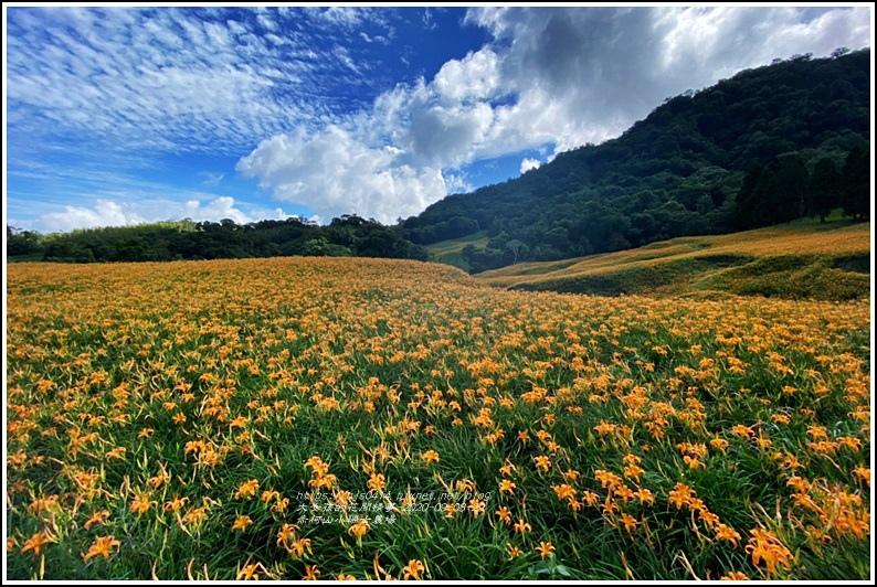赤柯山小瑞士農場-2020-08-22.jpg