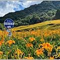 赤柯山小瑞士農場-2020-08-20.jpg