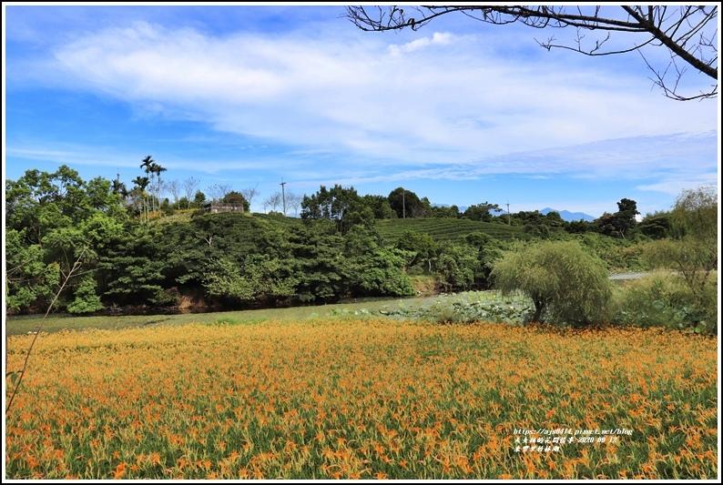 玉里東豐竹林湖-2020-09-09.jpg
