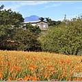 玉里東豐竹林湖-2020-09-17.jpg