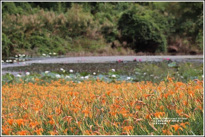 玉里東豐竹林湖-2020-09-20.jpg