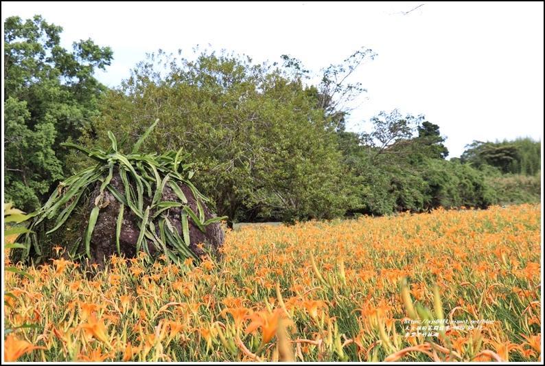 玉里東豐竹林湖-2020-09-22.jpg