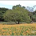 玉里東豐竹林湖-2020-09-21.jpg