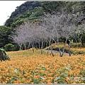 玉里東豐竹林湖-2020-09-24.jpg