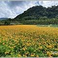 玉里東豐竹林湖-2020-09-36.jpg