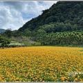 玉里東豐竹林湖-2020-09-41.jpg