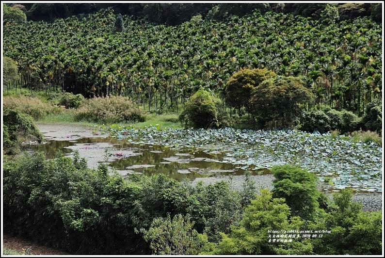 玉里東豐竹林湖-2020-09-45.jpg