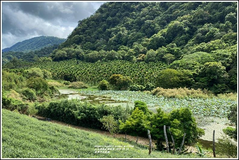 玉里東豐竹林湖-2020-09-46.jpg