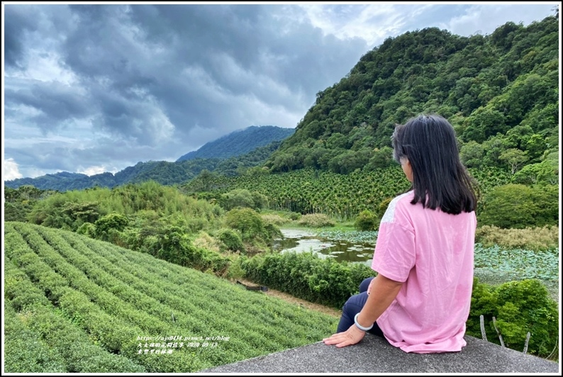 玉里東豐竹林湖-2020-09-49.jpg