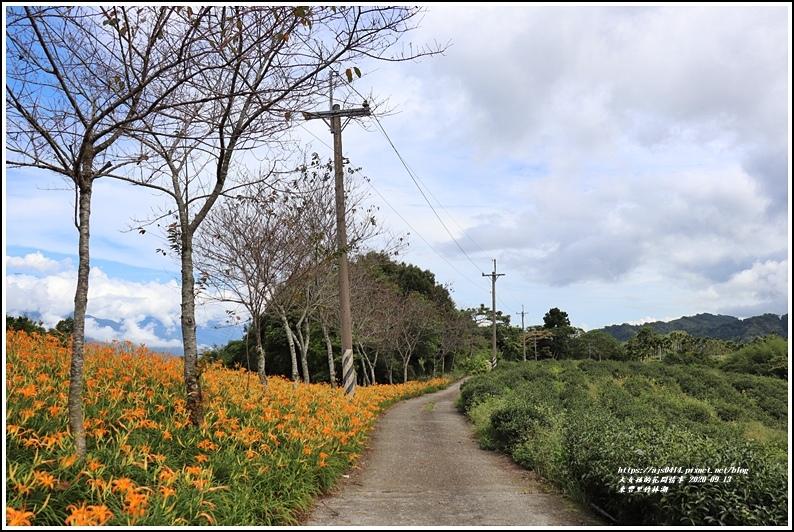 玉里東豐竹林湖-2020-09-62.jpg