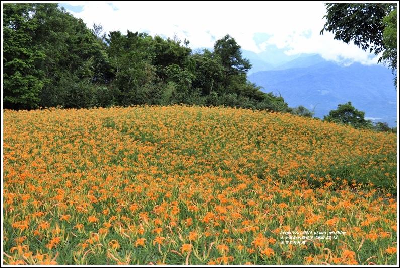 玉里東豐竹林湖-2020-09-66.jpg