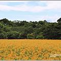 玉里東豐竹林湖-2020-09-74.jpg