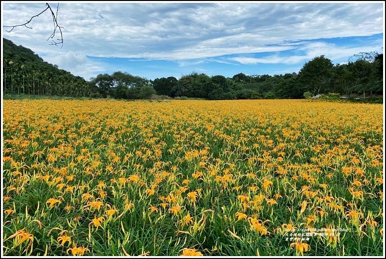 玉里東豐竹林湖-2020-09-73.jpg