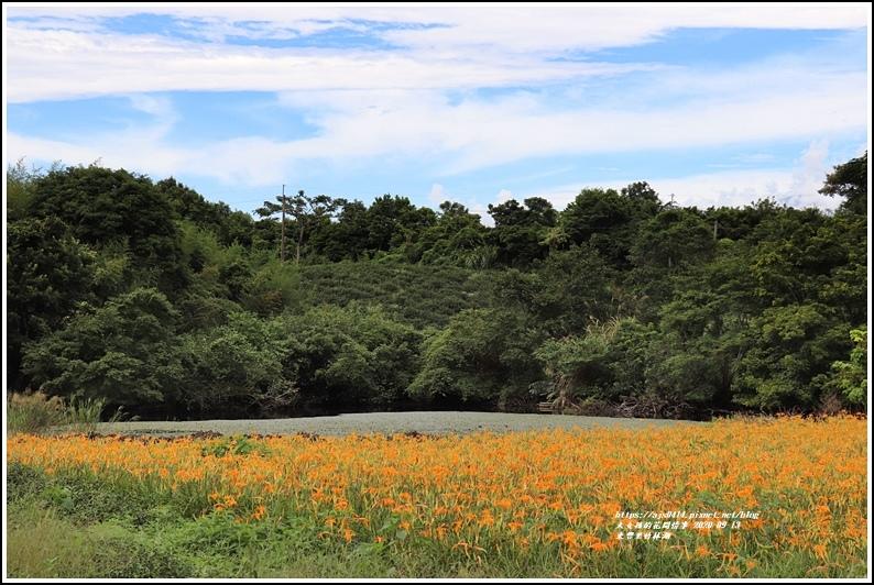 玉里東豐竹林湖-2020-09-78.jpg