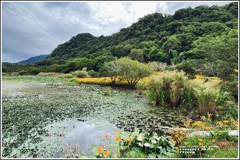 玉里東豐竹林湖-2020-09-83.jpg