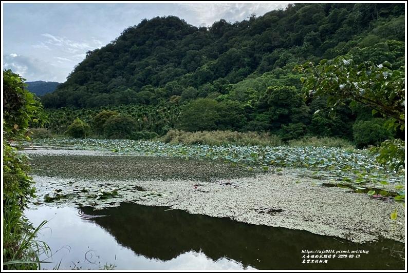 玉里東豐竹林湖-2020-09-84.jpg