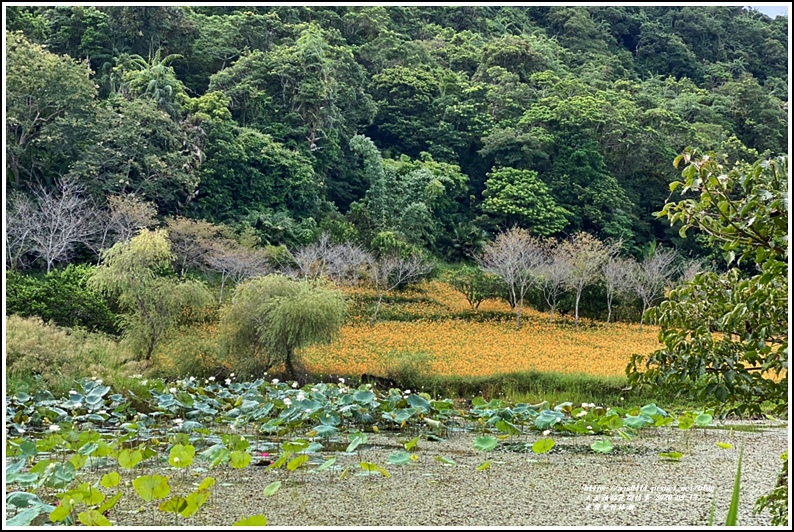 玉里東豐竹林湖-2020-09-85.jpg