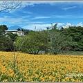 玉里東豐竹林湖-2020-09-101.jpg